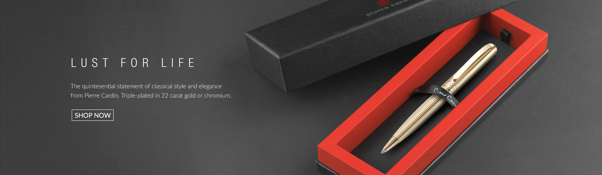 Designer homepage from Pierre Cardin